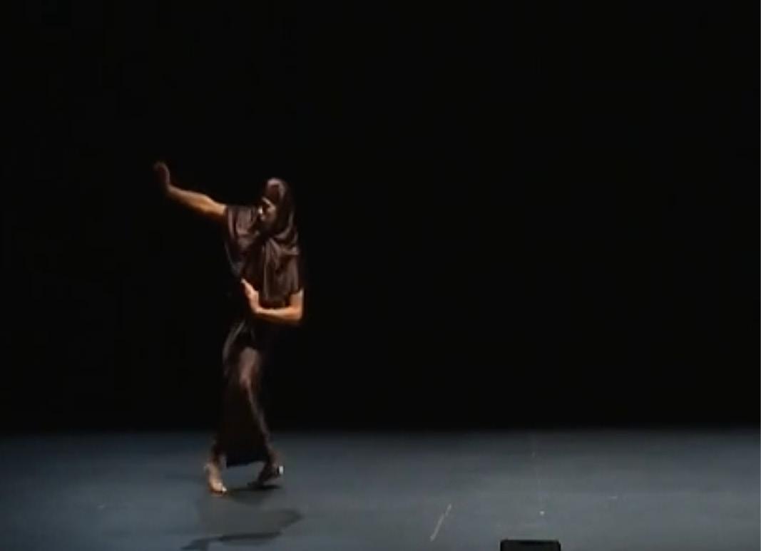 Vidéo Fabien Barba - Numéridanse