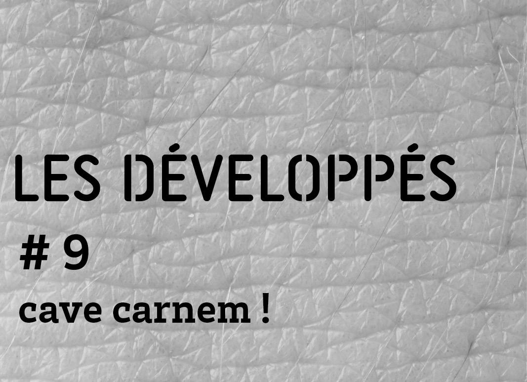 développé 9 cave carnem