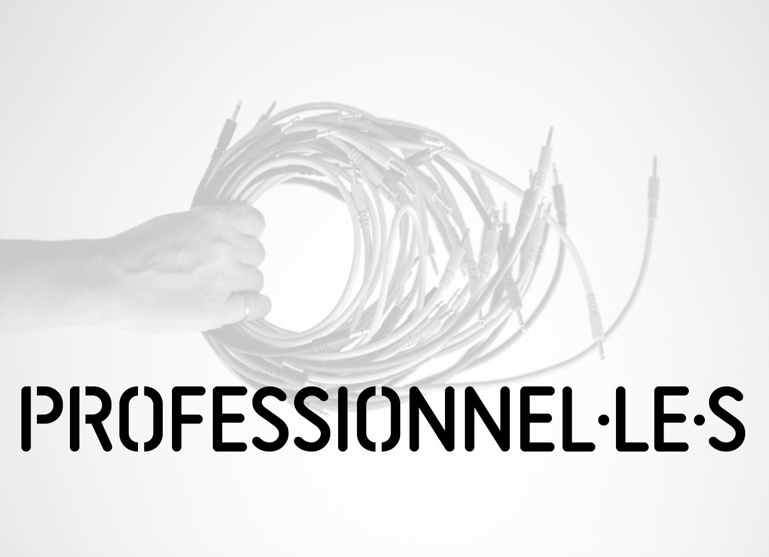 Faire Professionnelles-Professionels